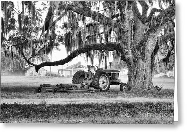 Recently Sold -  - Old Barns Greeting Cards - Old John Deere Under Live Oak Greeting Card by Scott Hansen