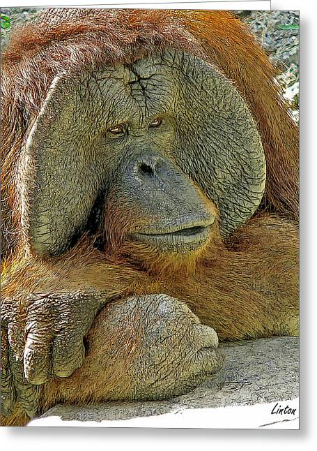 Orangutan Digital Art Greeting Cards - Old Man Of The Forest Greeting Card by Larry Linton