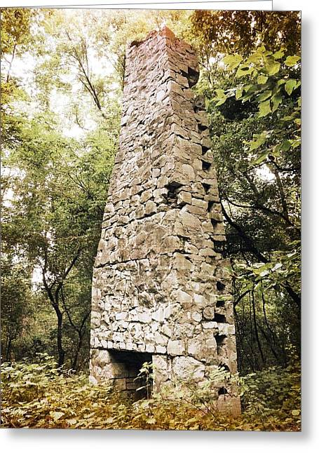 Cellphone Greeting Cards - Old Man of the Woods Greeting Card by Richard Reeve