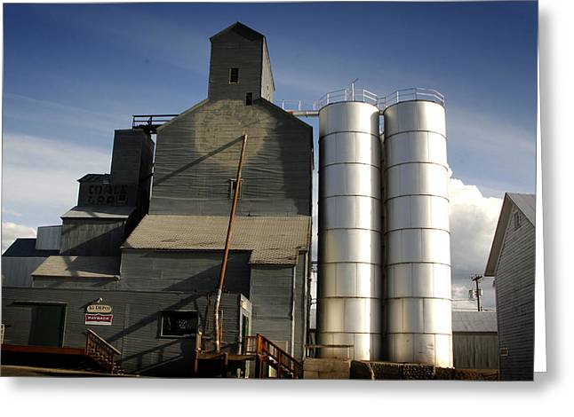 Old Feed Mills Photographs Greeting Cards - Old Mill Greeting Card by Dan Bucko