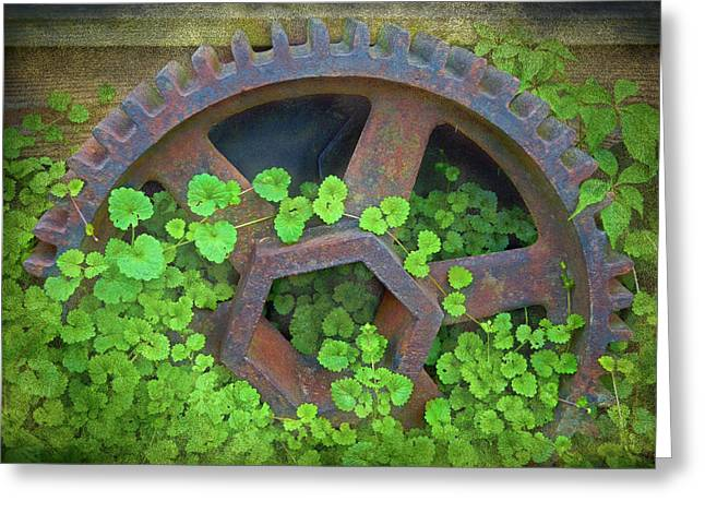 Old Mill Of Guiford Grinding Gear Greeting Card by Sandi OReilly