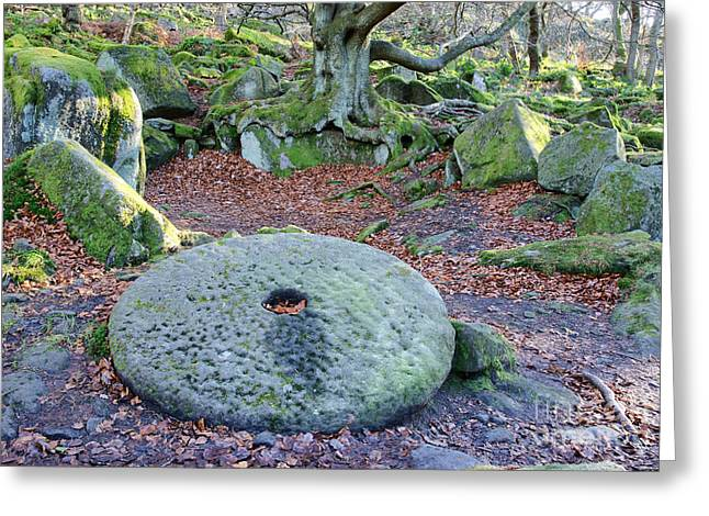 History Derbyshire Greeting Cards - Old millstone in woodland Greeting Card by David Birchall