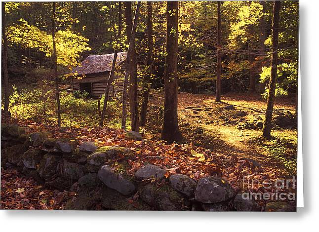 Old Mountain Shed Greeting Card by Paul W Faust -  Impressions of Light