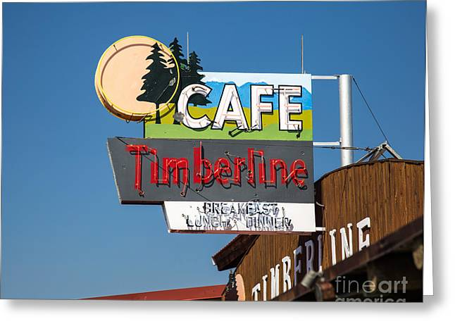 Advertisment Greeting Cards - Old Neon Sign in West Yellowstone Greeting Card by Edward Fielding
