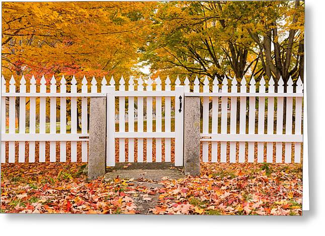 New Hampshire Leaves Greeting Cards - Old New England White Picket Fence Greeting Card by Edward Fielding
