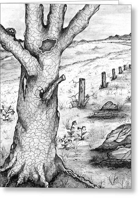 Gnarled Drawings Greeting Cards - Old Oak Tree with Birds Nest Black and White Greeting Card by S AshleyAnn Goforth