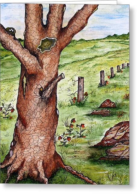 Gnarly Drawings Greeting Cards - Old Oak Tree with Birds Nest Greeting Card by S AshleyAnn Goforth