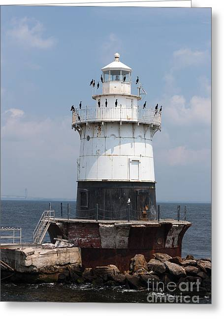 Phalacrocorax Auritus Greeting Cards - Old Orchard Shoal Light I Greeting Card by Clarence Holmes