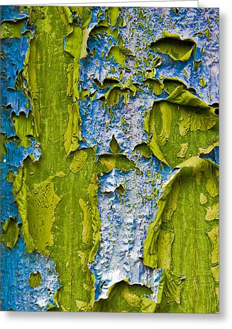 Deteriorating Greeting Cards - Old Paint Greeting Card by Frank Tschakert