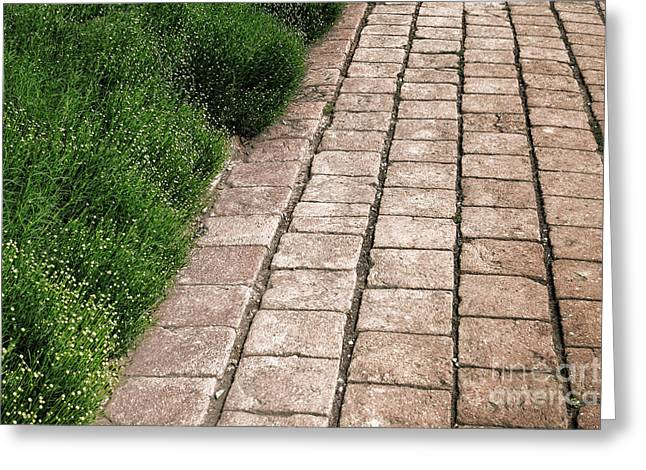 Historic Home Greeting Cards - Old Pavers Alley Greeting Card by Olivier Le Queinec