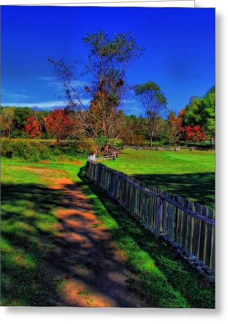Old Fence Greeting Cards - Old Picket Fence And Natures Colors Greeting Card by Dan Sproul