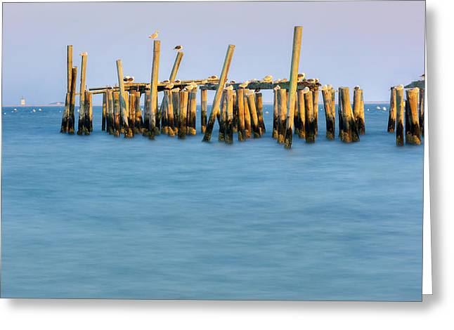 Provincetown Greeting Cards - Old Pier Greeting Card by Bill  Wakeley