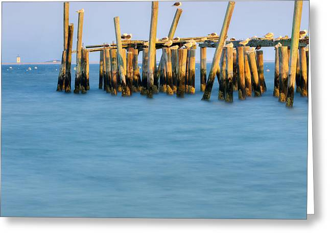 Provincetown Greeting Cards - Old Pier Square Greeting Card by Bill  Wakeley