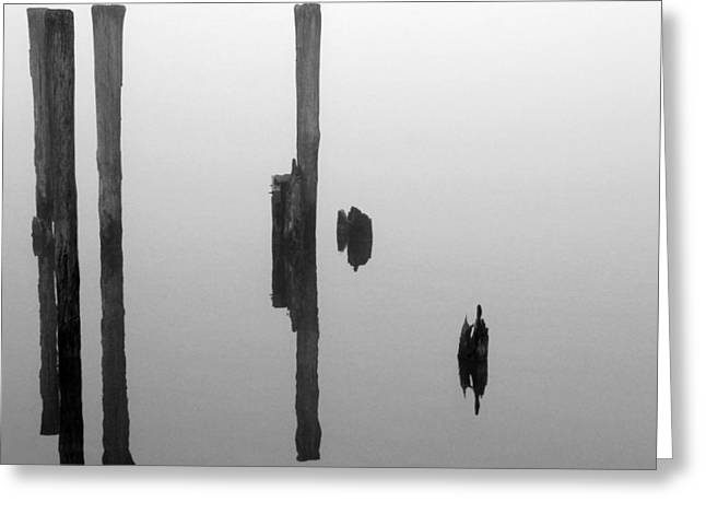 Reflections In River Greeting Cards - Old Piling Reflections BW Greeting Card by Mary Bedy