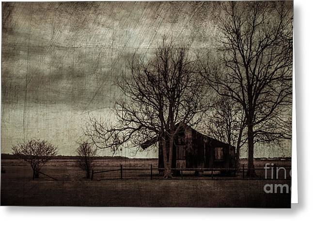 Old House Photographs Digital Greeting Cards - Old Plantation Greeting Card by Perry Webster