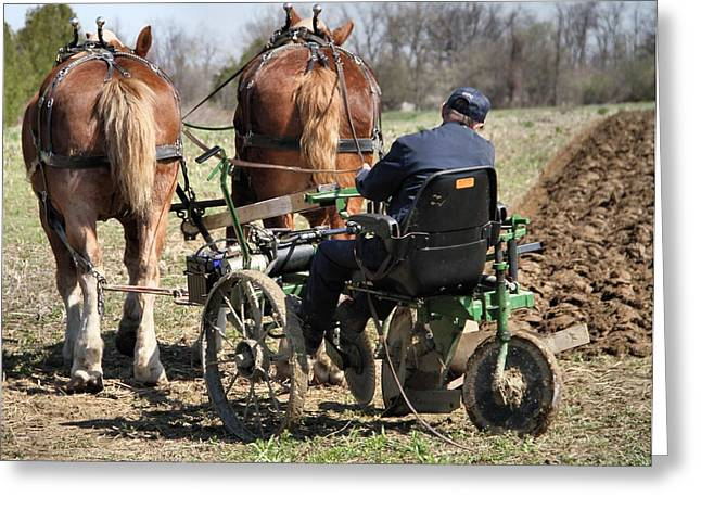 Old Plows Greeting Cards - Old Plow And Work Horses Greeting Card by Dan Sproul