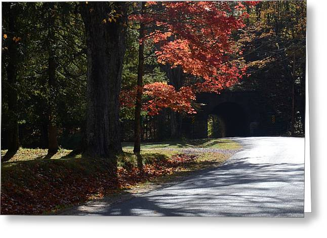Fall Scenes Pyrography Greeting Cards - Old Poland Road Tunnel 2 Greeting Card by Marshall Bannister