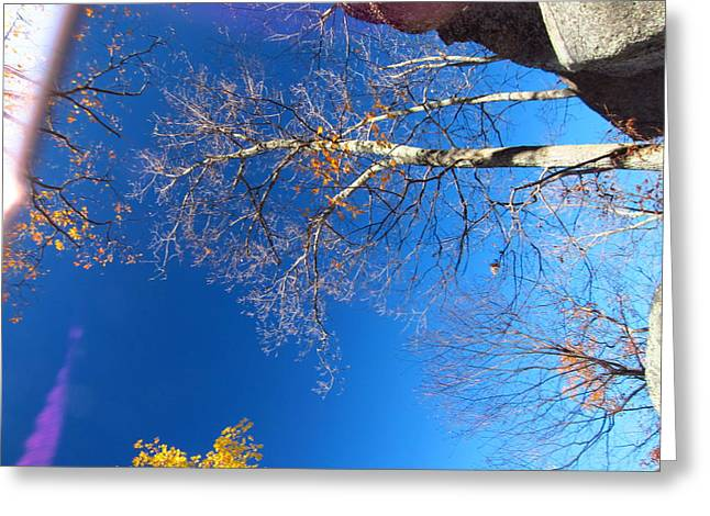 Trail Greeting Cards - Old Rag Hiking Trail - 121210 Greeting Card by DC Photographer