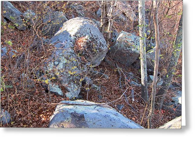 Va Greeting Cards - Old Rag Hiking Trail - 121220 Greeting Card by DC Photographer