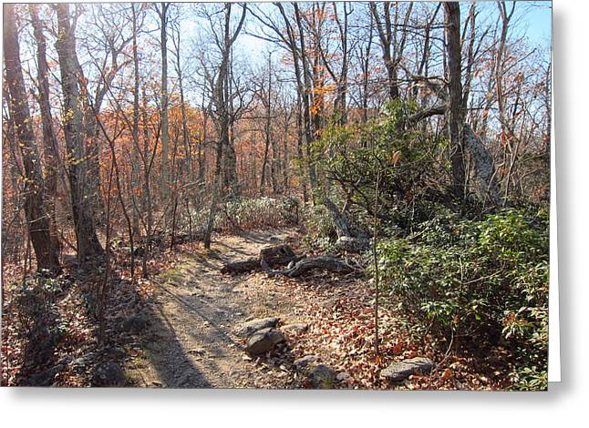 Old Rag Hiking Trail - 121247 Greeting Card by DC Photographer