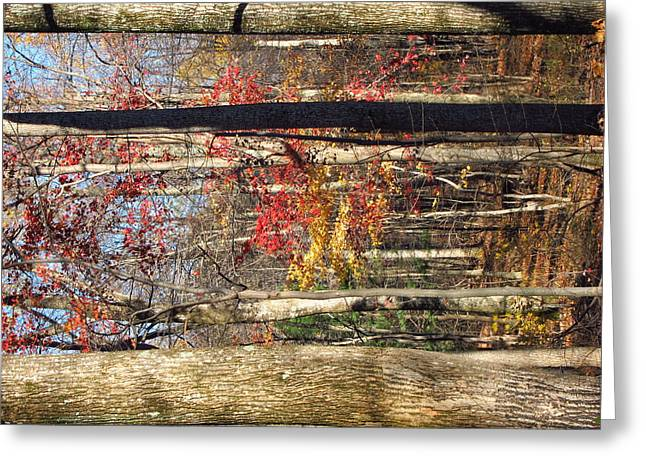 Hike Photographs Greeting Cards - Old Rag Hiking Trail - 121250 Greeting Card by DC Photographer