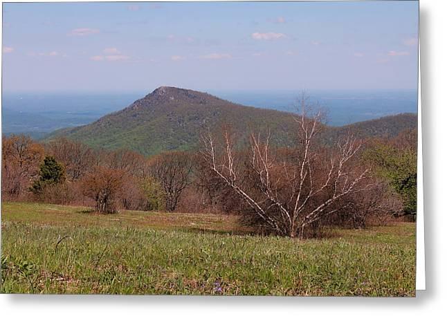 Ragged Peaks Greeting Cards - Old Rag Mountain Greeting Card by Francie Davis