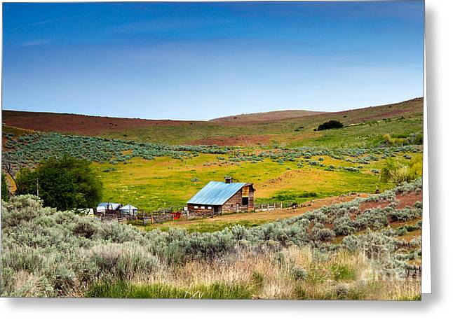 Emmett Valley Greeting Cards - Old Ranch Greeting Card by Robert Bales