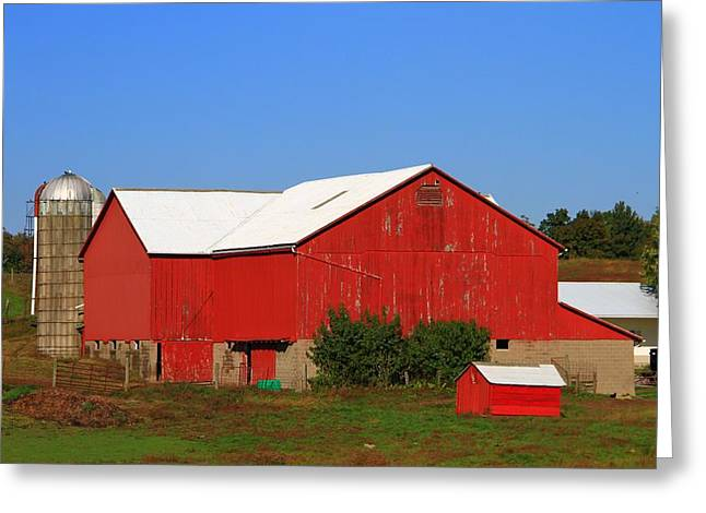 Amish Greeting Cards - Old Red Barn In Ohio Greeting Card by Dan Sproul