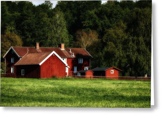 Environment-friendly Greeting Cards - Old Red Farm Houses In Rural Nature Greeting Card by Christian Lagereek