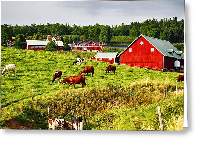 Environment-friendly Greeting Cards - Old Rural Farms And Nature Surroundings Greeting Card by Christian Lagereek