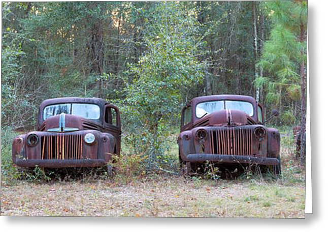 Antique Automobiles Greeting Cards - Old Rusty Cars And Trucks On Route 319 Greeting Card by Panoramic Images