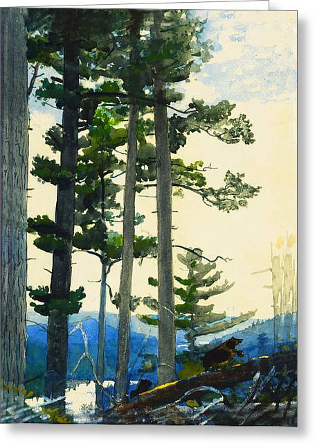 Old Settlers Bears Greeting Card by Winslow Homer