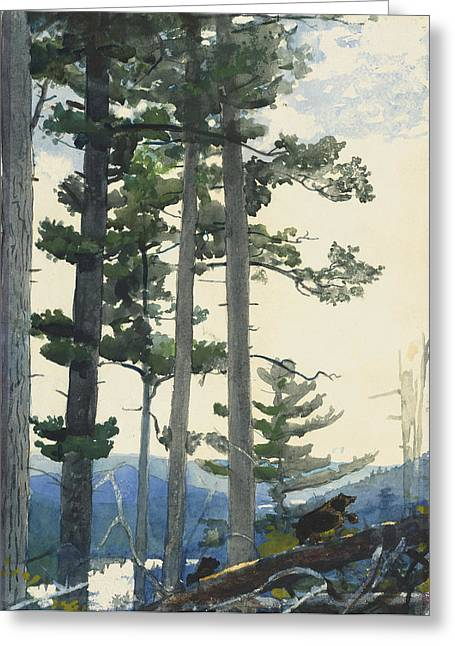 Winslow Paintings Greeting Cards - Old Settlers Greeting Card by Winslow Homer