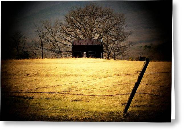 Shed Greeting Cards - Old Shed Greeting Card by Michael L Kimble