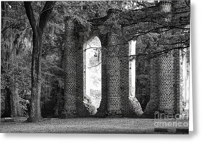Prince William Greeting Cards - Old Sheldon Church Side View Greeting Card by Scott Hansen