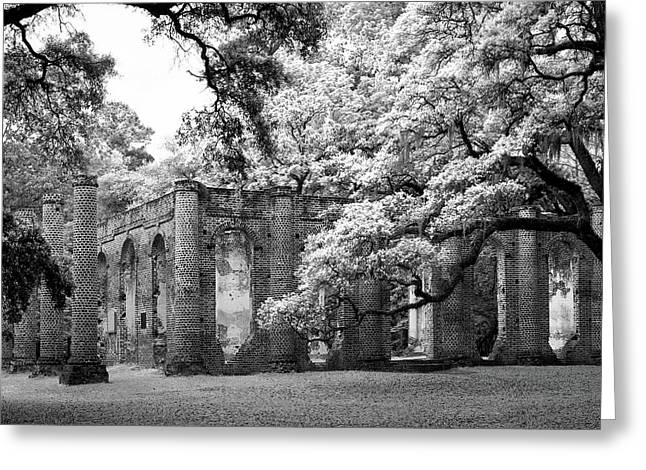 South Carolina Infrared Landscape Greeting Cards - Old Sheldon - Infrared Greeting Card by Harold Rau