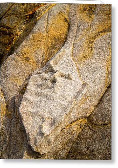 Cambria Greeting Cards - Old Stone Face Greeting Card by Roger Mullenhour