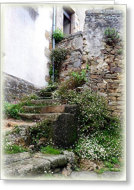 Quartier Greeting Cards - Old Stone Steps Greeting Card by Carla Parris