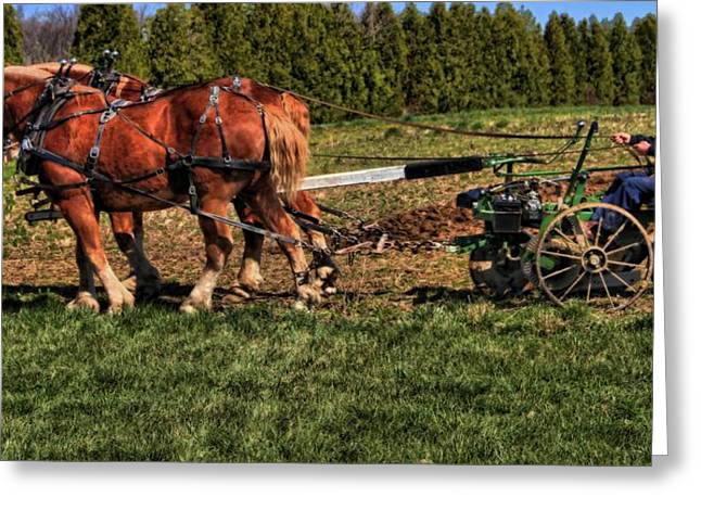 Sowing Greeting Cards - Old Time Horse Plowing Greeting Card by Dan Sproul