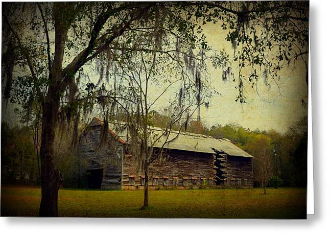 Florida Panhandle Digital Art Greeting Cards - Old Tobacco Barn Greeting Card by Carla Parris