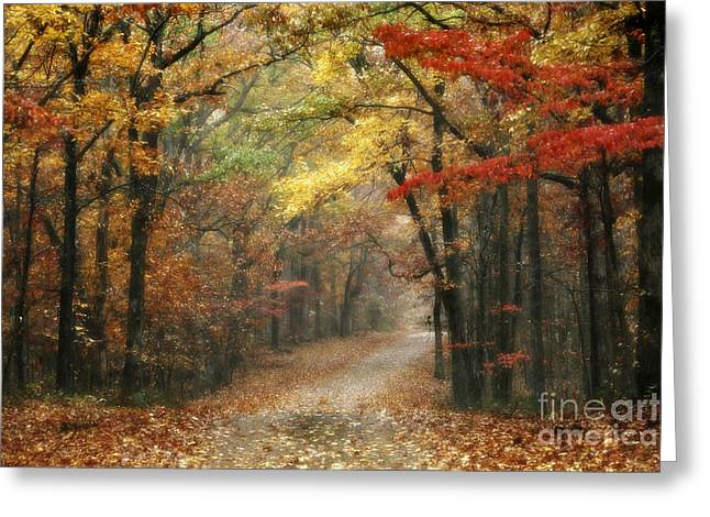 Tn Greeting Cards - Old Trace Fall - Along the Natchez Trace in Tennessee Greeting Card by T Lowry Wilson
