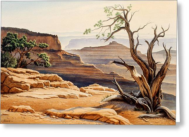 North Rim Greeting Cards - Old Tree at the Canyon Greeting Card by Paul Krapf