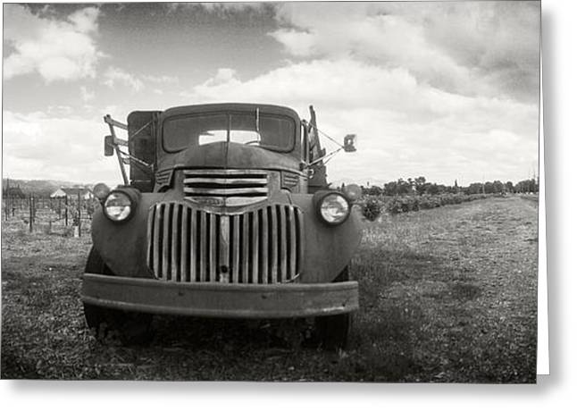 Napa Valley And Vineyards Greeting Cards - Old Truck In A Field, Napa Valley Greeting Card by Panoramic Images