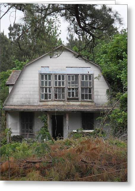 Old Tress Greeting Cards - Old Vacant House Greeting Card by Donna Wilson