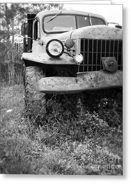 White Truck Greeting Cards - Old Vintage Dodge Work Truck Greeting Card by Edward Fielding