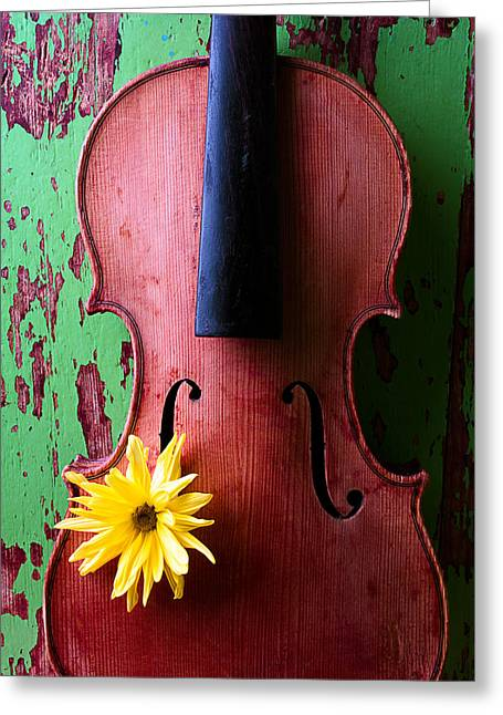 Old Wall Greeting Cards - Old Violin Against Green Wall Greeting Card by Garry Gay