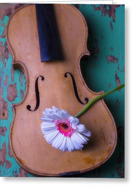 Old Wall Greeting Cards - Old violin and white daisy Greeting Card by Garry Gay