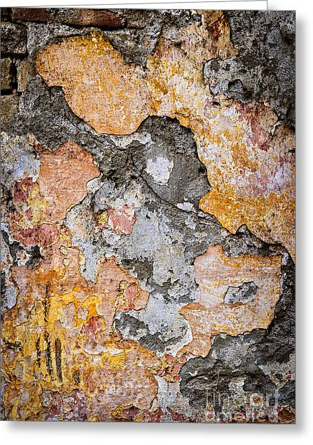 Layer Greeting Cards - Old wall abstract Greeting Card by Elena Elisseeva