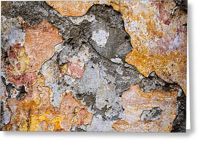 Old wall abstract Greeting Card by Elena Elisseeva