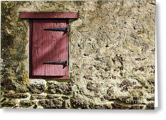 Building. Home Greeting Cards - Old Wall and Door Greeting Card by Olivier Le Queinec
